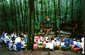 Show in the woods France.jpg